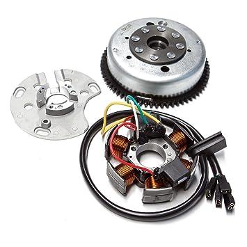 luz eléctrica y POLRAD Completo para Derbi GPR 50 Euro 2 RMS: Amazon.es: Coche y moto