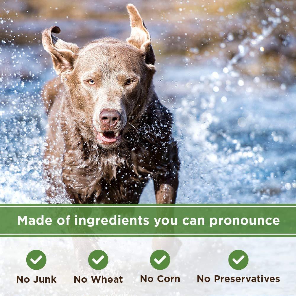 Amazon.com : 4Legz Organic Sweet Potatoes All Natural Crunchy Non-GMO Dog Treats, 7 Ounce : Pet Supplies