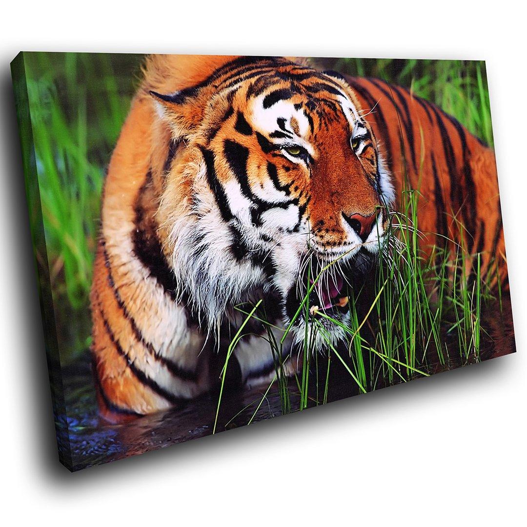 AA084E gerahmte Leinwanddruck bunte Wandkunst - Tiger Schilf Fluss ...