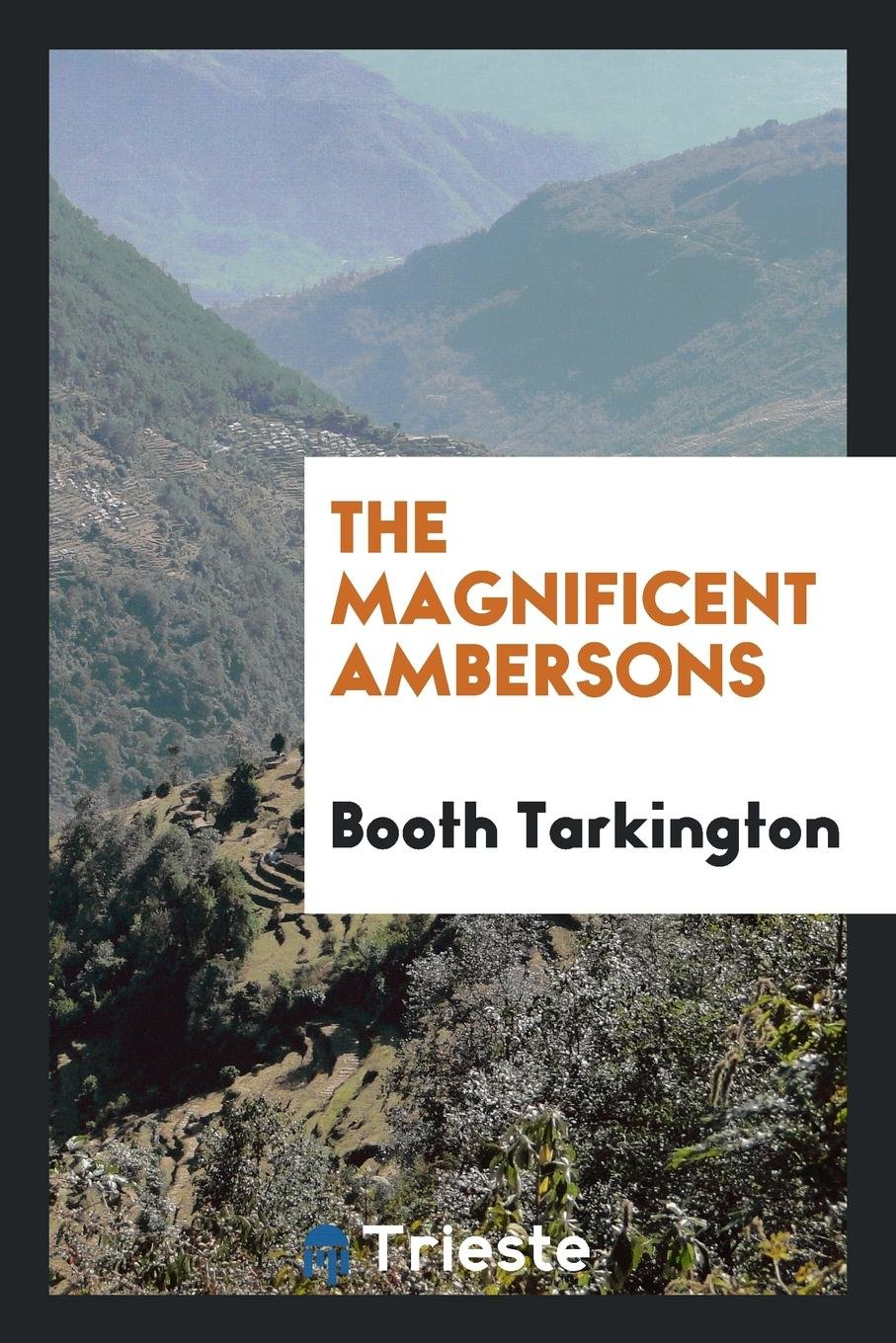 Download The magnificent Ambersons pdf