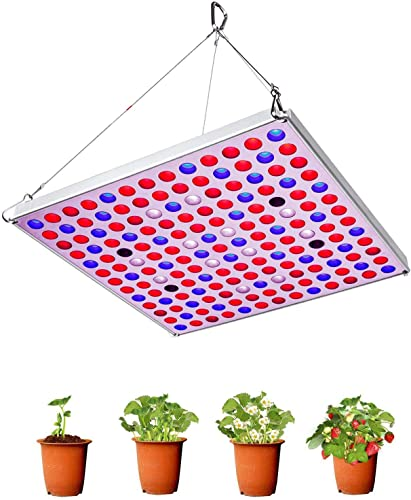 Grow Light 75W Full Spectrum Led Plant Light 3500K Sunlike Plant lamp Bulbs for Indoor Plants Hydroponics Vegetables Flowers from Seedlings to Flowering Fruiting -Red Blue
