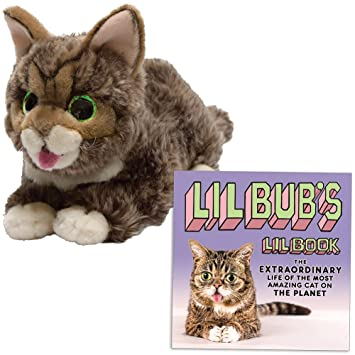 Amazon Com Set Lil Bub Glow Purr Cat Plush Stuffed Animal