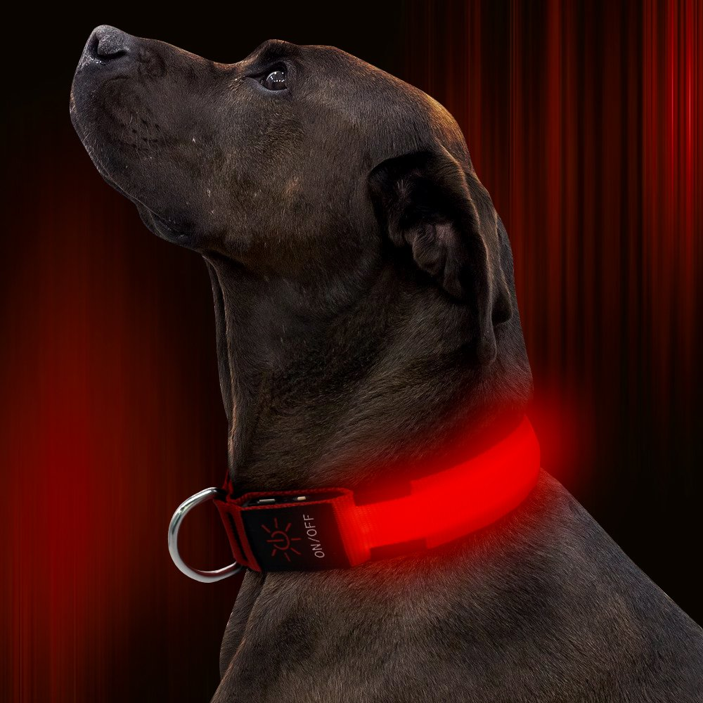 collar dog blue pet watch youtube light up led