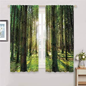 DIMICA Cute Curtain Forest Scenic Scenery with Sunbeams in The Forest Sunny Summer Day Morning View Picture Sliding Soundproof Curtains W52 x L63 Inch Green White