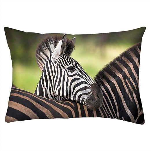 Red Zebra Funda de cojín con Estampado de Cebra roja, 16 x ...
