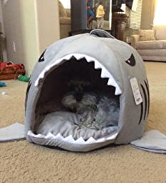 ... Bed with Pet Bed Mat, Small to Medium (Medium) : Shark Cat Bed : Pet