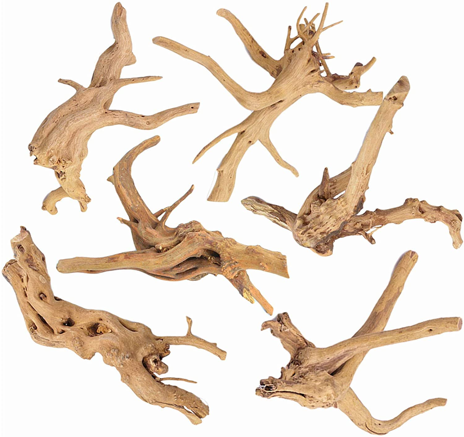 CHLORIS 6Pcs Aquarium Driftwood Spider Wood Ornament for Fish Tank Natural Branches Decorations (4in-6in)