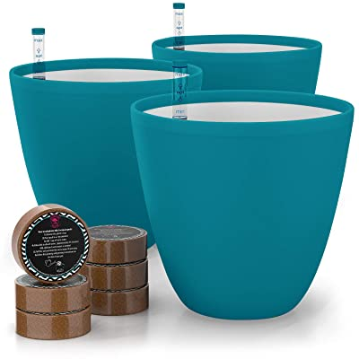 7'' Self Watering Planters for Indoor Plants - Flower Pot with Water Level Indicator for Plants, Grow Tracking Tool - Self Watering Planter Plant Pot - Coco Coir - Teal Round 3 Pack : Garden & Outdoor