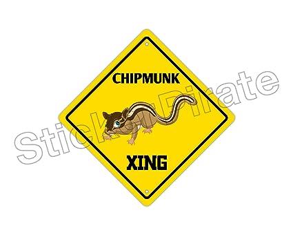 Signs Of Chipmunks In Garden Garden Ftempo