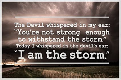 Amazoncom I Am The Storm Quote Motivational Poster 12x18 Inch