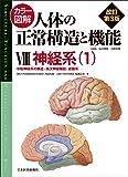 カラー図解 人体の正常構造と機能〈8〉神経系1