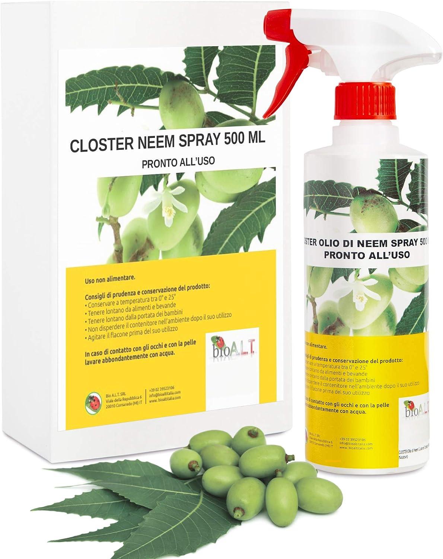 CLOSTER Spray de Aceite de Neem - Insecticida Natural para Plantas en Jardín Balcón contra Pulgones Chinches Piojos Araña Cochinilla, Desinfestante Biodegradable Ecológico Spray 500ML Listo para Usar