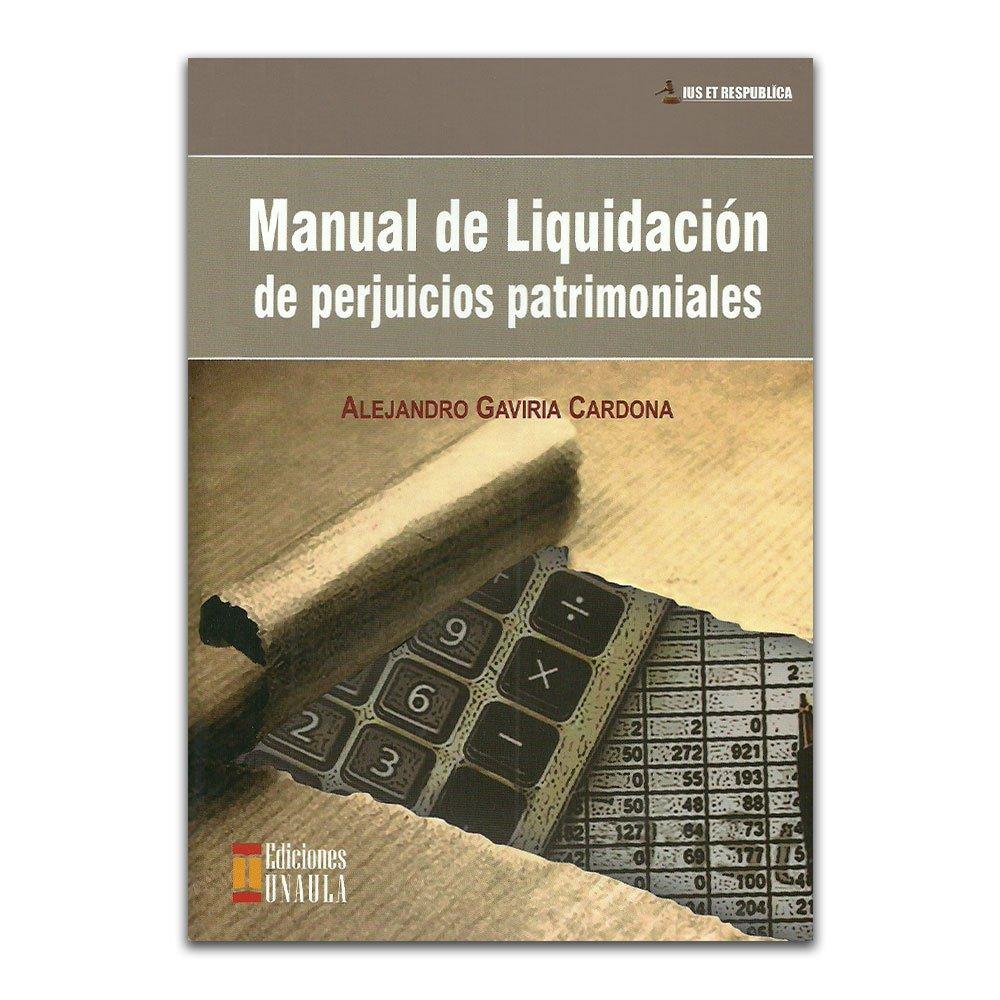 Manual de Liquidación de perjuicios patrimoniales (Spanish) Paperback – 2013