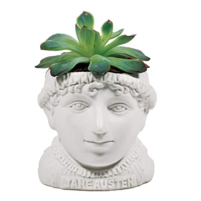 The Unemployed Philosophers Guild Jane Austen Bust Succulent Planter - Plant Holder Pot for Small Cactus, Flowers, Herbs, and More: Home & Kitchen