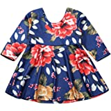 Toddler Baby Girl Dress Floral Long Sleeve Ruffle Skirt Party Dresses Clothes