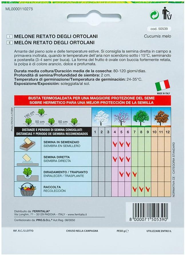 Semillas Melon Cantalupo (3 Gramos): Amazon.es: Jardín