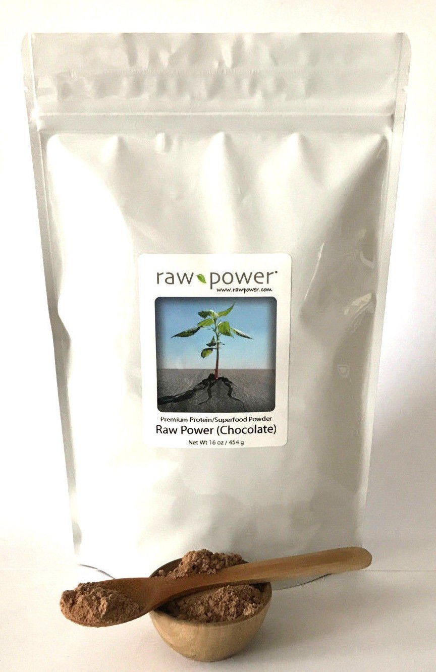 Raw Power Protein (Chocolate) 16oz, Premium Protein/Superfood Powder Blend