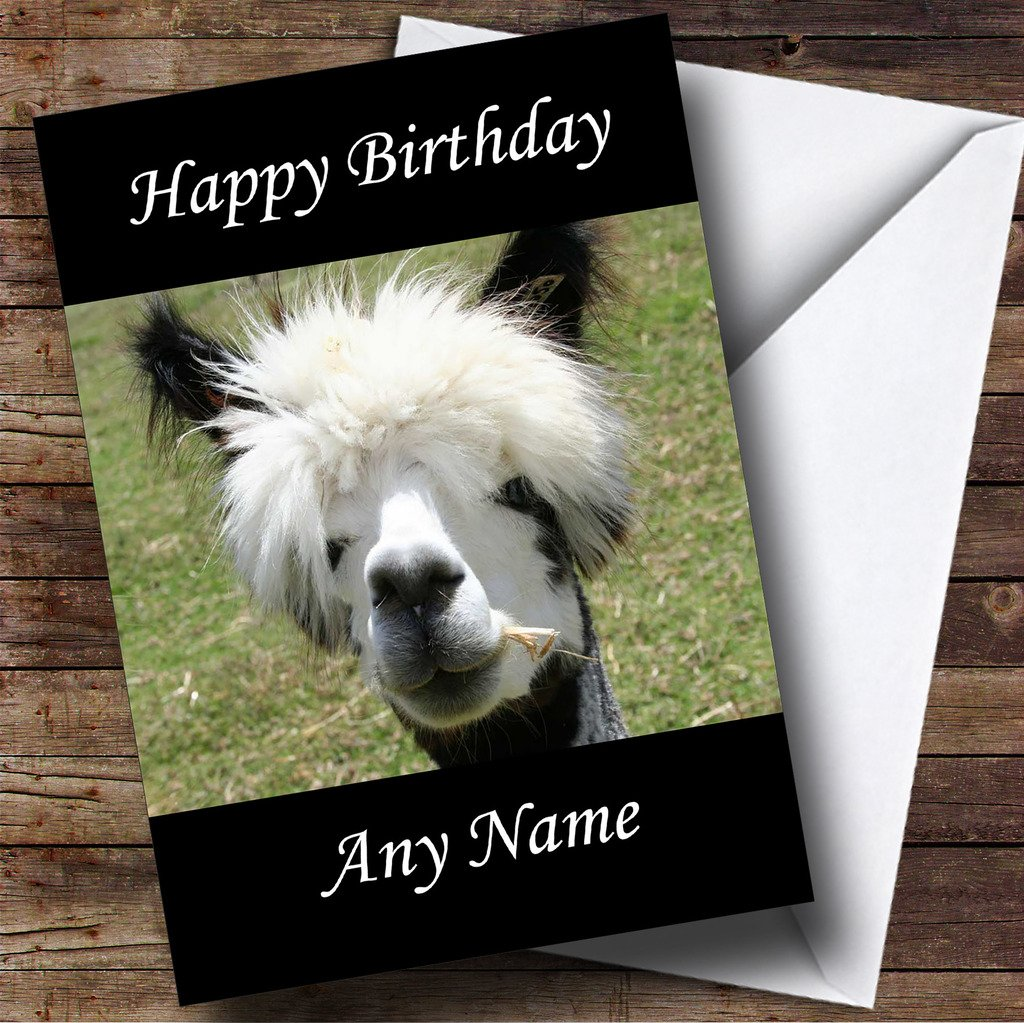 Funny Alpaca Personalised Birthday Card Amazoncouk Office Products
