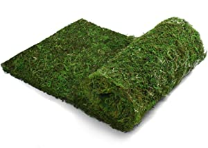 AQUEENLY Dried Moss Table Runner, Dried Moss for Crafts (12 x 71 Inches)