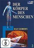 Der Körper des Menschen 2 - Das Gehirn