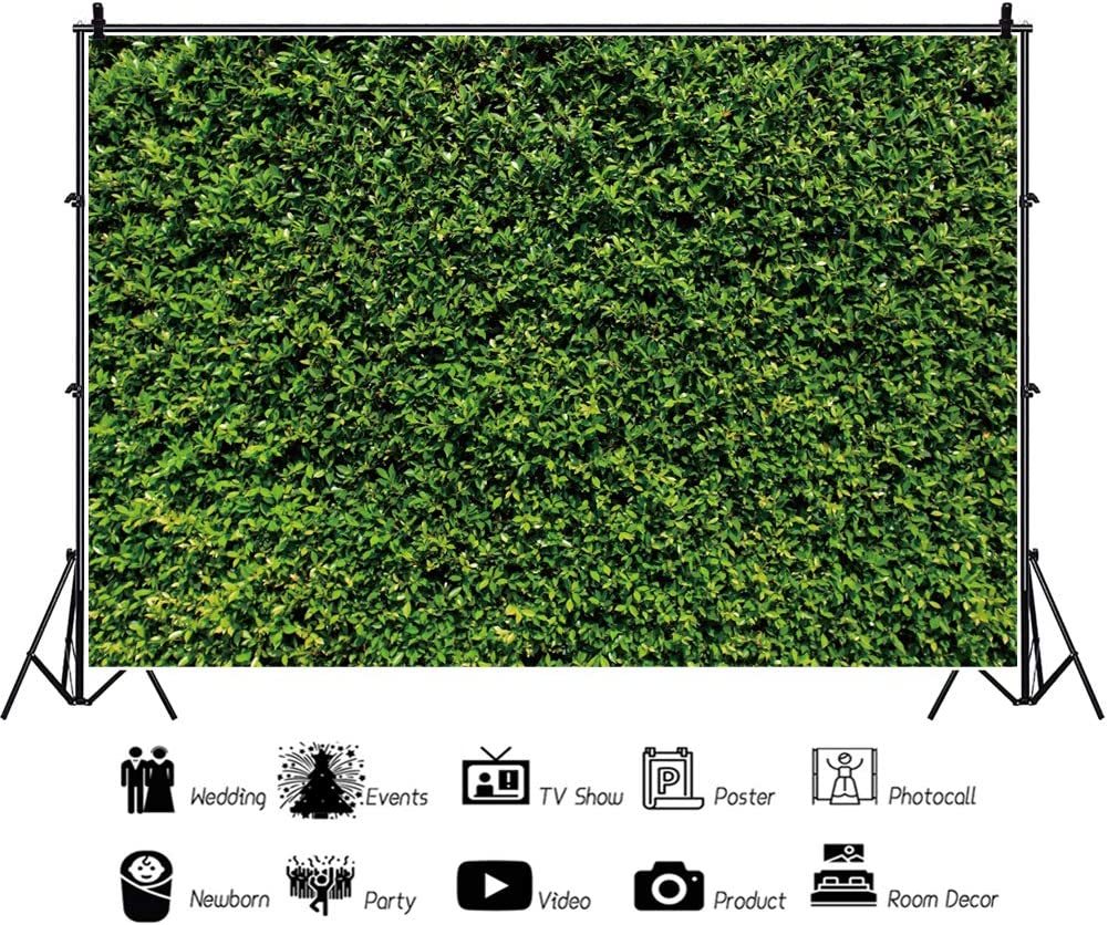 YongFoto 12x8ft Nature Green Leaves Backdrop Wedding Photography Background Birthday Party Banner Bridal Shower Interior Decor Kids Adult Portrait Photo Shoot Studio Props Wallpaper