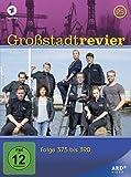 Großstadtrevier 25 - Folge 375 bis 390 [4 DVDs]