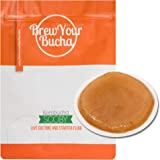 Brew Your Bucha Kombucha Tea SCOBY with starter fluid. (1 SCOBY)