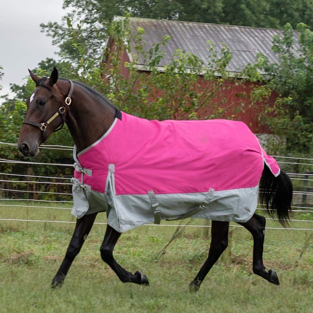 with Grey Skirt 200 gram Fill Rugged Ride 1200 Denier Midweight Waterproof Turnout Blanket