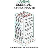 Kanban Esencial Condensado