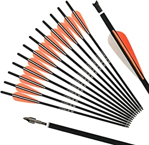 REEGOX Crossbow Bolts 20 inch Bio Crossbow Arrows with Moon Nocks and Removable Tips (Pack of 12)