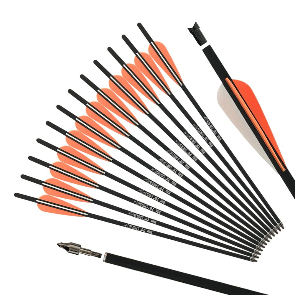 REEGOX 20 inch Carbon Crossbow Bolts Bio with 4-Inch Vanes(Pack of 12) Orange by REEGOX