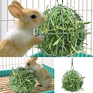 CoscosX 2 in 1 Pet Feeder Food and Grass Frame Bowls Hay Manger for Rabbits Chinchillas Big Guinea Pigs Small Animals Anti-bite with Hanging Set,Animal Supplies