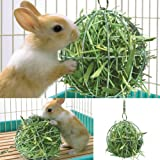 CoscosX Hay Manger Hanging Hay Feeder Rack Dispenser Food Ball Toy Pet Feeder Food and Grass Frame Bowls Anti-bite with Hanging Set for Guinea Hamster Rat Rabbit Chinchilla Pig Small Animals Fun