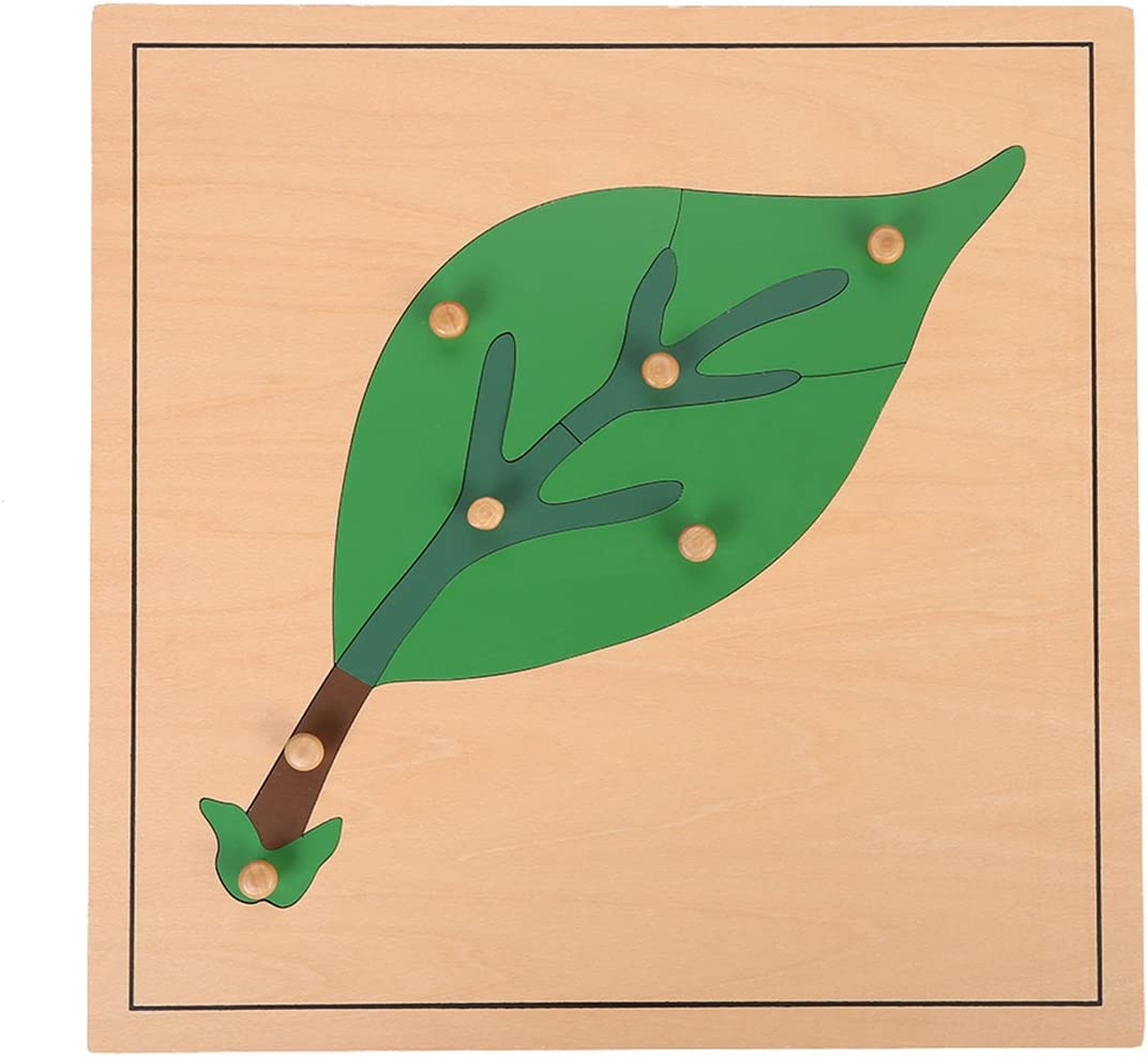 Montessori Nature Materials Leaf Puzzle for Early Preschool Learning Toy by Leader