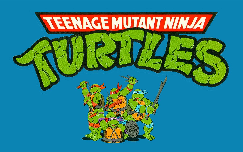 Amazon.com: Treasure Keeper Teenage Mutant Ninja Turtles ...