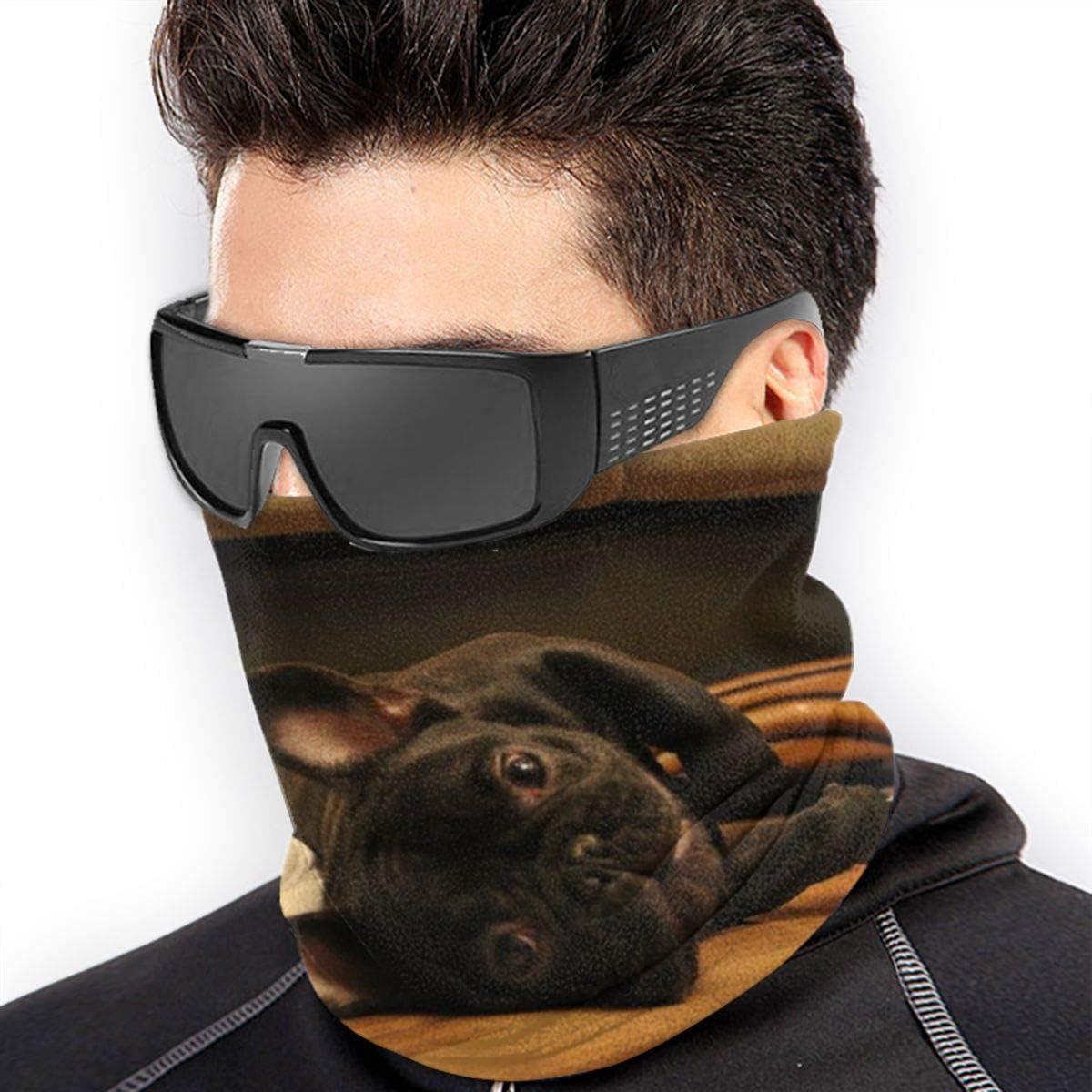 Two Bulldog French Neck Warmer Gaiter For Men Women Headband Face Mask Bandana Head Wrap Scarf Headwear Winter Balaclava For Ski Running Motorcycle