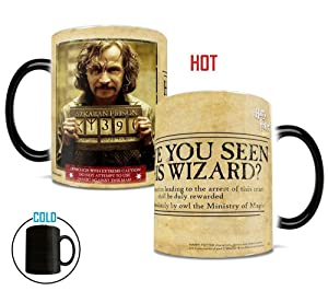 Morphing Mugs Harry Potter Sirius Black Have You Seen This Wizard Heat Reveal Ceramic Coffee Mug - 11 Ounces