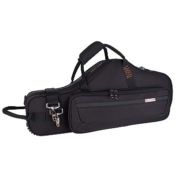 Amazon.com: Pro Tec PRO PAC Funda ligera para violín ...