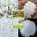 Hydroponic Super Coarse Perlite Soil Volcanic Mineral + THCity Gloves - 1/2 Gallon Bag