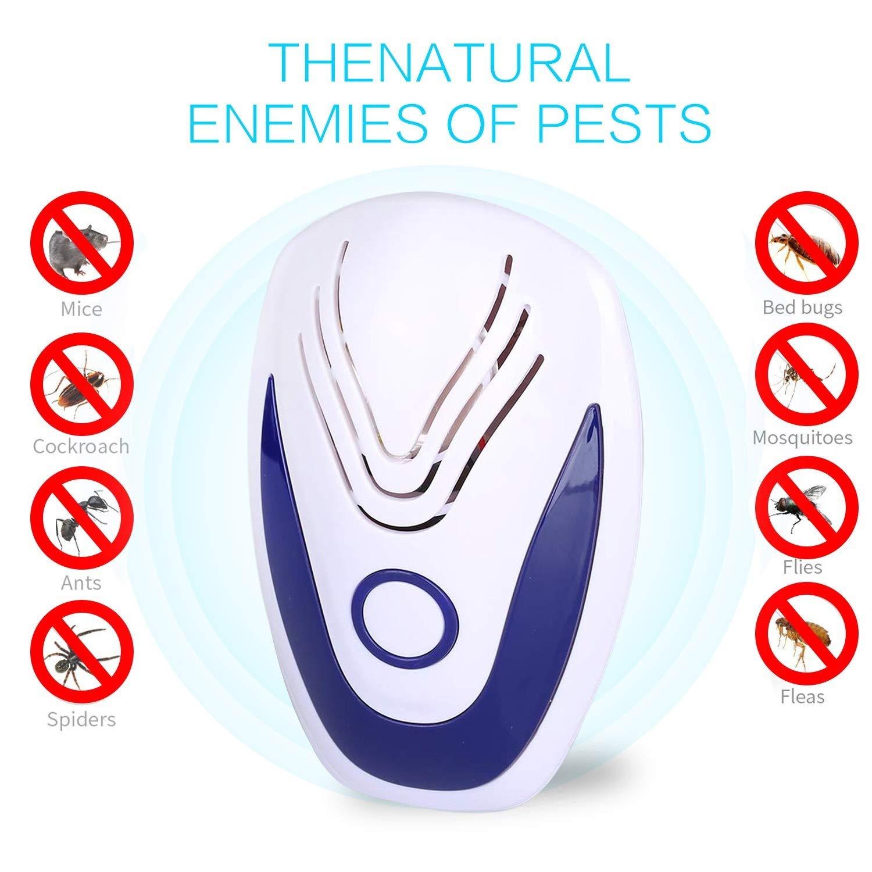 Ottimo repellente per tenere lontano ratti e scarafaggi.