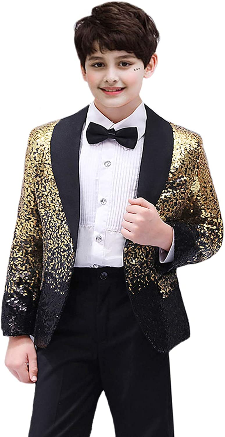 DGMJ Boys Suits for Wedding Elegant 2 Piece Sequins Childrens Formal Suits for Birthday Party HTXZ019