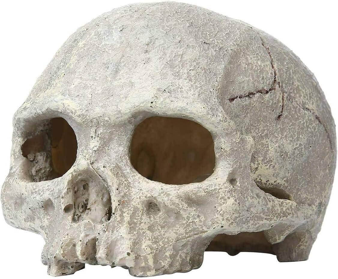 AVOICE Aquarium Ornament - Emulational Skull Decor Resin Decorations