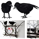 Dazzling Toys Black Feathered Birds Halloween Prop Party Decoration 2 Pack