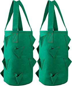 2Krmstr 3 Gallon Hanging Strawberry Planting Grow Bags, 2 Pack Fabric Garden Planter Bags for Strawberry Vegetable Flower Plants, Growing Bag Planter Pots Container with 11 Pockets, Green