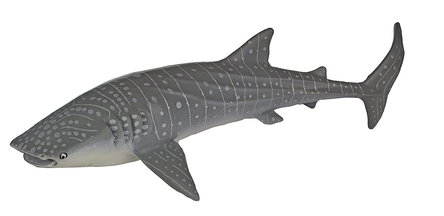 Monterey Bay Collection- Whale Shark Adult