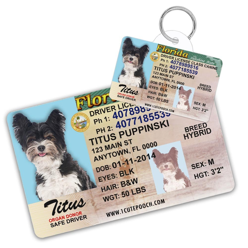 Florida Driver License Custom Dog Tag for Pets and Wallet Card - Personalized Pet ID Tags - Dog Tags For Dogs - Dog ID Tag - Personalized Dog ID Tags - Cat ID Tags - Pet ID Tags For Cats