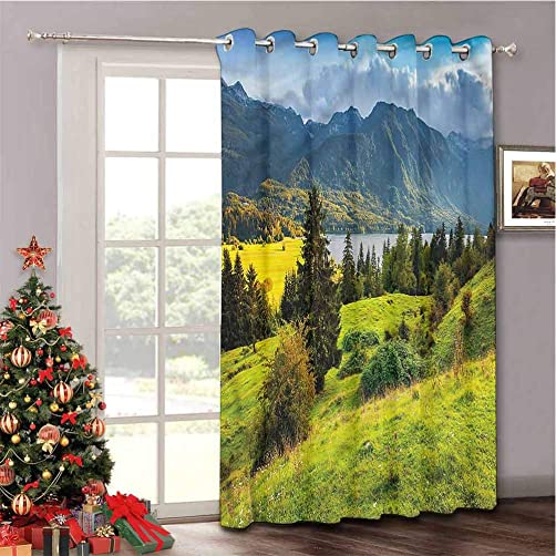 Aishare Store Privacy Room Divider Curtain Thermal Insulated Blackout Curtains