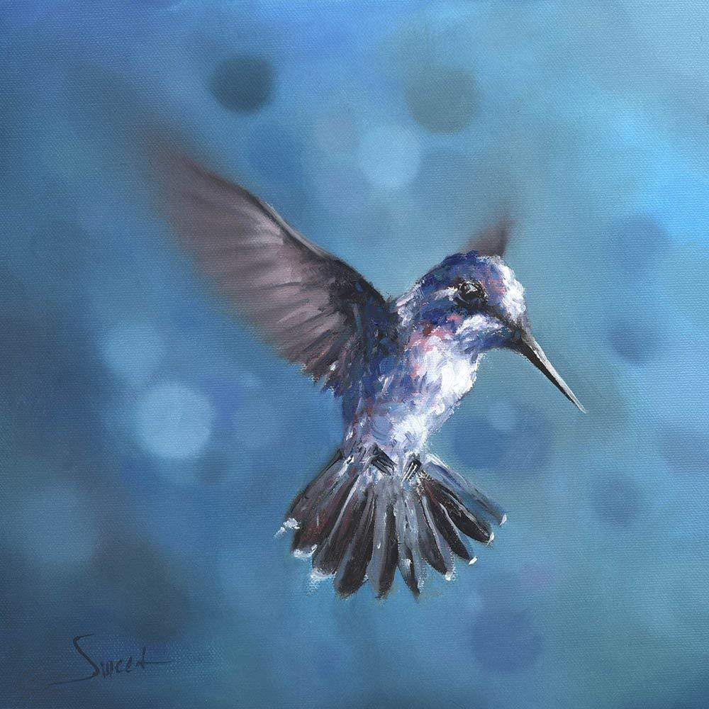 Amazon.com: Blue Hummingbird Art Print, Bird Decor, Bird Painting,  Hummingbird Gifts, Hummingbird Decor, Bird Artwork: Handmade