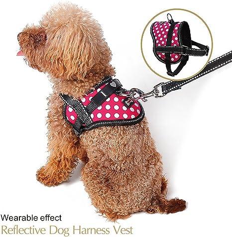 Arnés de viaje ajustable para mascotas con correa reflectante de ...
