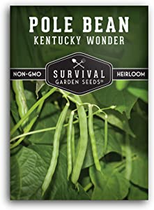 Survival Garden Seeds - Kentucky Wonder Pole Bean Seed for Planting - Packet with Instructions to Plant and Grow in Your Home Vegetable Garden - Non-GMO Heirloom Variety